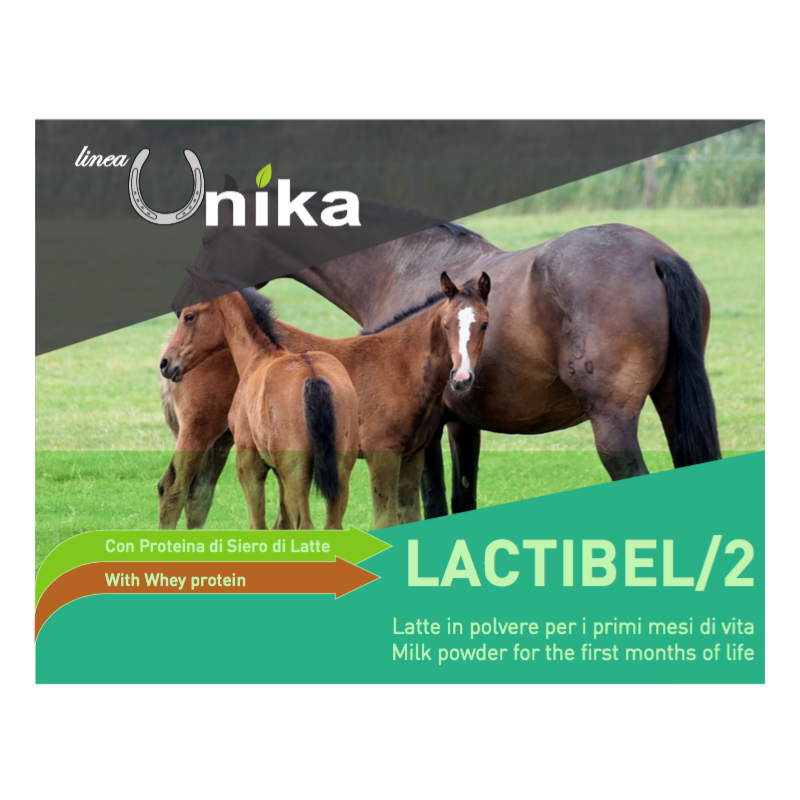 up-to-date styling bambino vendita all'ingrosso Latte per Puledri LACTIBEL /2 LINEA UNIKA 5 kg