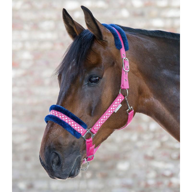 come ordinare online prestazione affidabile Capezza per puledro, pony e shetland UNICORN GLITTER