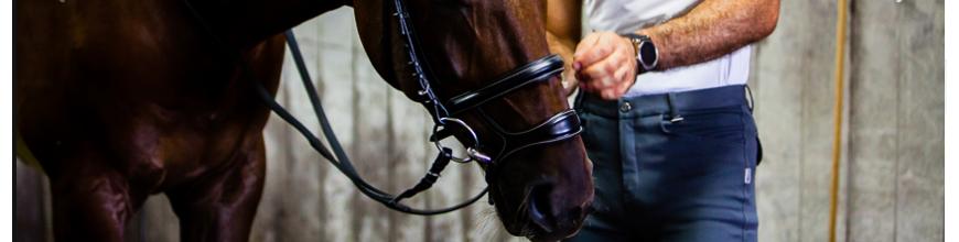 TESTIERE PER MORSO E FILETTO - Selleria la Colombaia articoli equitazione on line