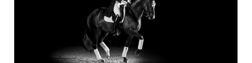 Sottosella Dressage - Selleria la Colombaia articoli equitazione on line
