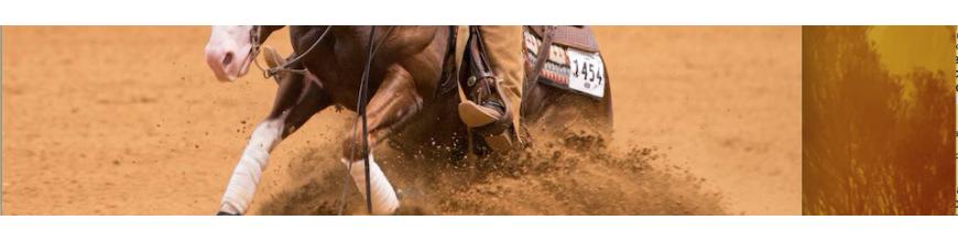 Testiere & finimenti - Selleria la Colombaia articoli equitazione on line