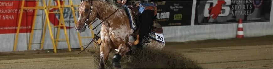 Selle western per tutte le discipline, servizio di saddle fitting - Selleria la Colombaia articoli equitazione on line
