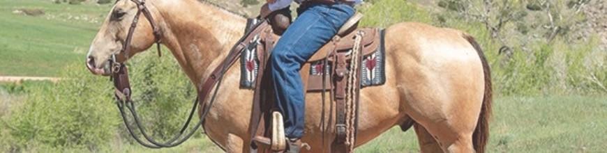 Redini Western - Selleria la Colombaia articoli equitazione on line