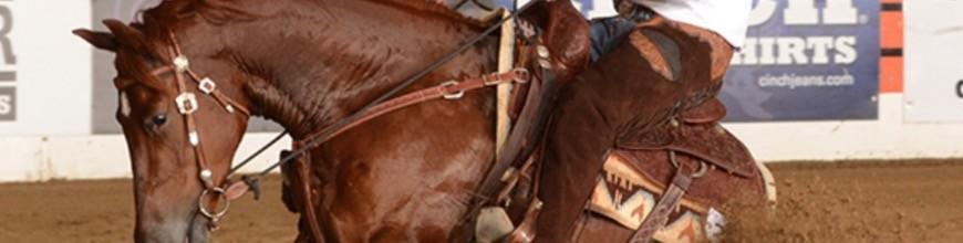 I FILETTI WESTERN- Selleria la Colombaia articoli equitazione on line