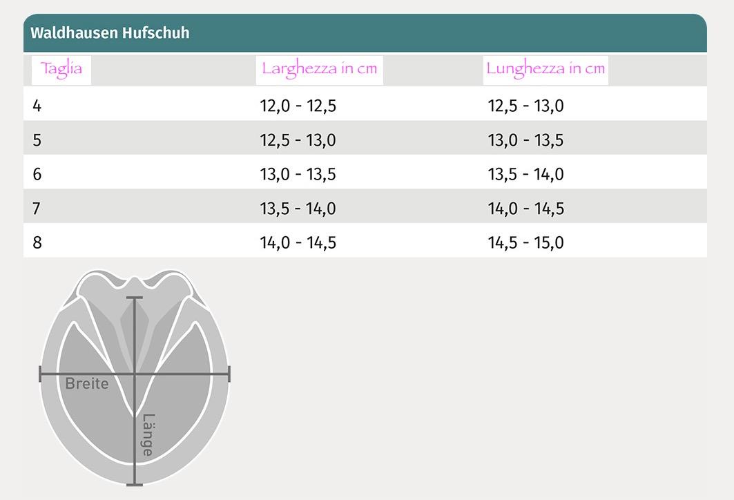 tabella misura scarpette waldhausen