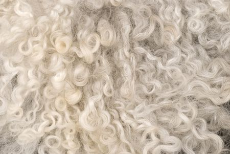 sottosella western lana