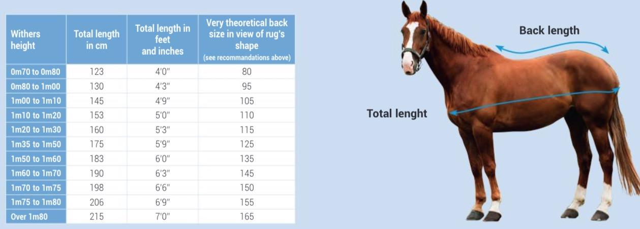 Come misurare il cavallo